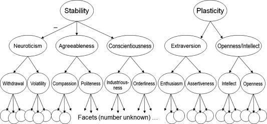 big-five-hierarchy